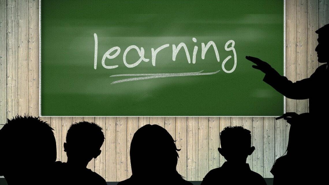 Nauka języka – jakiego języka się uczyć?