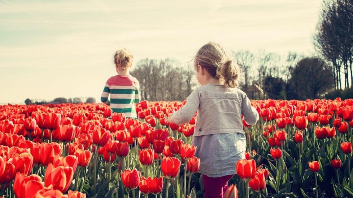 Czas na zmiany – 4 rzeczy, które warto zrobić tej wiosny